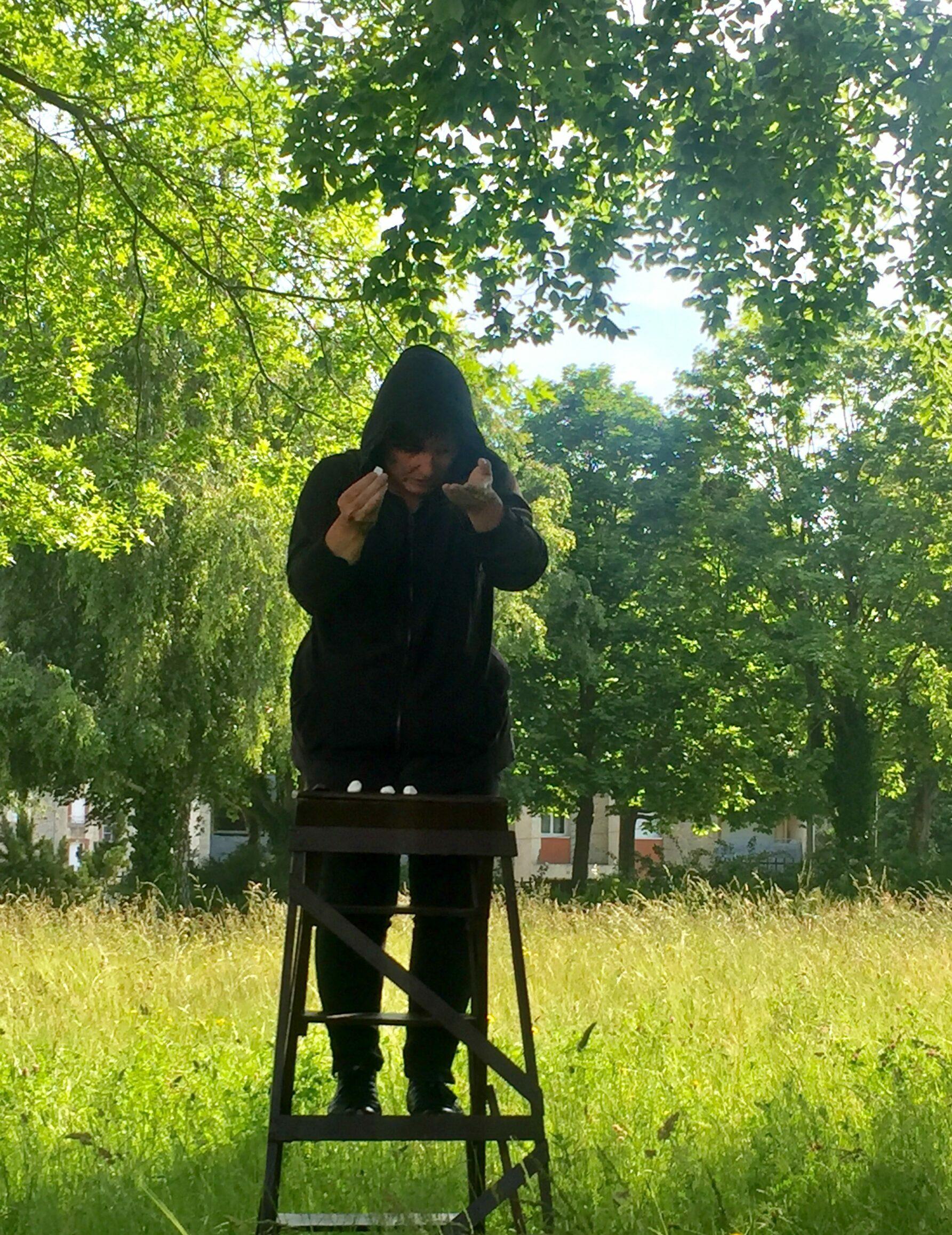 Venez découvrir «Le jours des cailloux – sous l'arbre» le 28 août à la Villa Carmélie